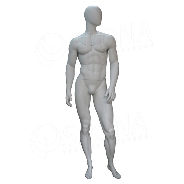 Figurína pánská FLASH na focení d98a4b68e0
